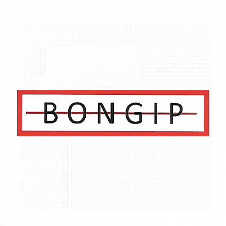 Bongip pleisterwerken